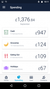 Monzo Review Categories